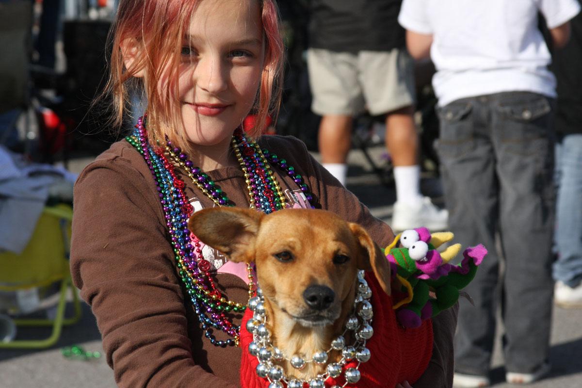 Pensacola Beach Blogger » The Dogs of Mardi Gras